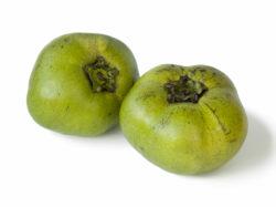 Buy Black Sapote Fruit