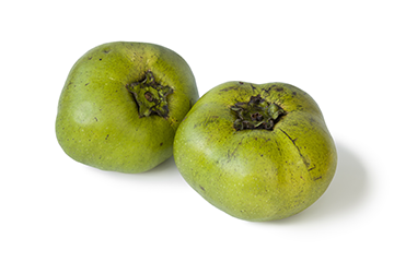 Buy Black Sapote